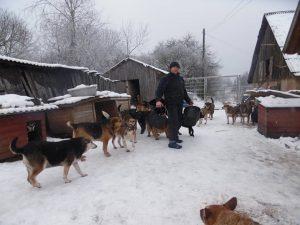 viktor winter